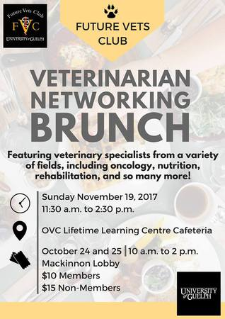 Networking Brunch 2017